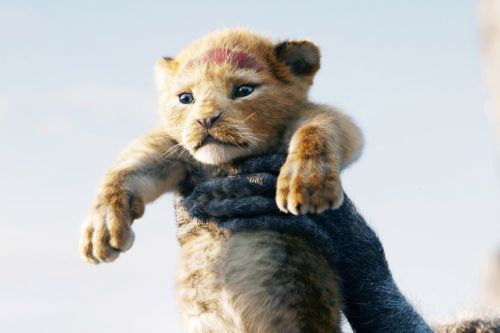 Here's When 'The Lion King' Is Coming to Video on Demand