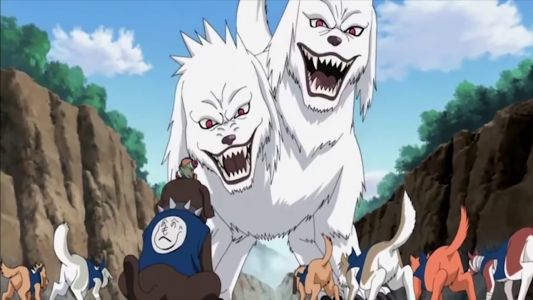 Boruto: 10 Things Fans Don't Know About Kiba