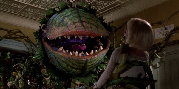 Little Shop Of Horrors Might Be Remade With Taron Egerton And Scarlett Johansson And No Thank You