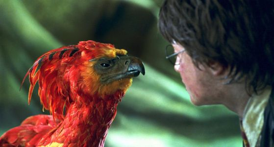 Harry Potter: The 11 Most Powerful Magical Creatures, Officially Ranked