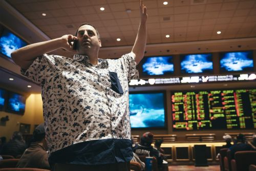 Stream It or Skip It: 'Action' on Showtime, a Docuseries About the Growing Industry of Legal Sports Gambling