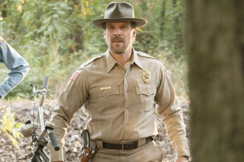 David Harbour Says 'Stranger Things' Season 3 Is Inspired By Chevy Chase's 'Fl