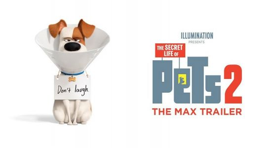 The Secret Life of Pets 2 Max Character Trailer Released