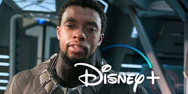 Chadwick Boseman Doesn't Want Black Panther To Be In A Disney+ Series