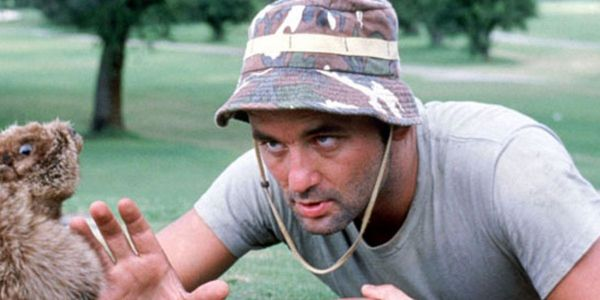 Bill Murray's Brother Who Inspired Caddyshack Is Dead At 76
