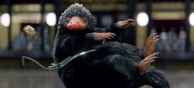 Move Over, Porgs: Baby Nifflers Are Coming to 'Fantastic Beasts: The Crimes of Grindelwald'
