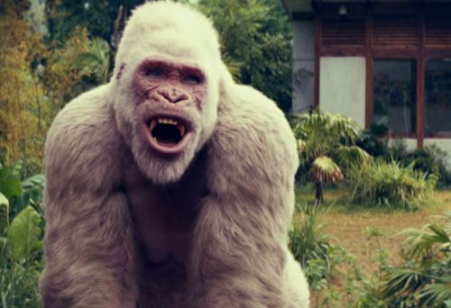Dwayne Johnson Video Game Adaptation 'Rampage' Official Trailer