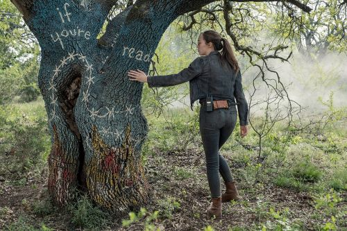 'Fear the Walking Dead's Tree-Writing Mystery Had a Surprising Resolution