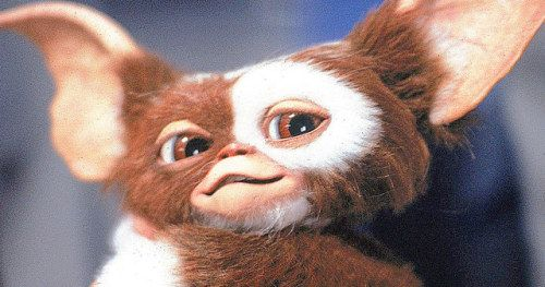 Gremlins 3 Will Be a Full Reboot Says Director Chris