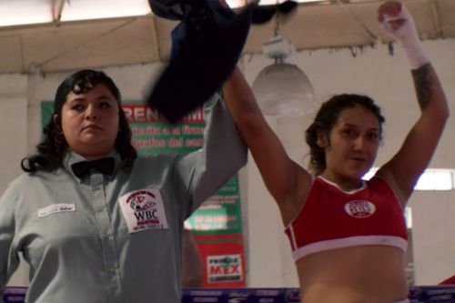 Stream It Or Skip It: 'Fightworld' On Netflix, A Humanizing Look at Fight Culture