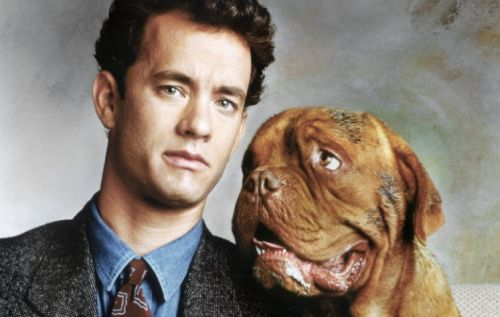That Moment In 'Turner & Hooch' When Hooch Leads Turner to Emily