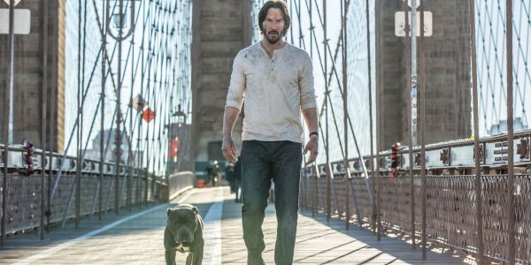 John Wick 3 Clip Confirms Nothing Bad Happens To The Dog