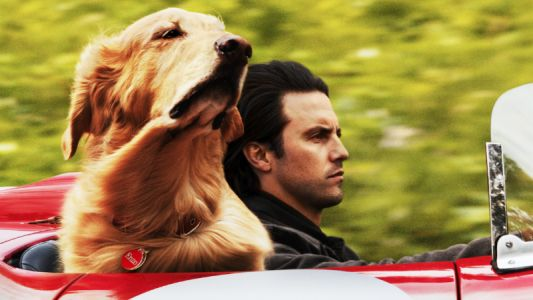 The Art of Racing in the Rain Trailer Delivers A Kevin Costner Voiced Dog