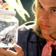 New 'Arachnophobia' on Its Way From Steven Spielberg and James Wan