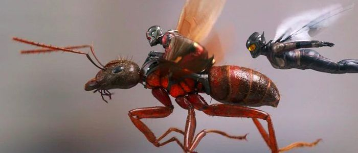 New 'Ant-Man and the Wasp' Images and Story Details Tease The Other Marvel Sequel of 2018