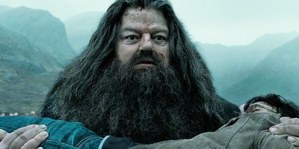 Harry Potter: 10 Main Characters Ranked From Good To Evil