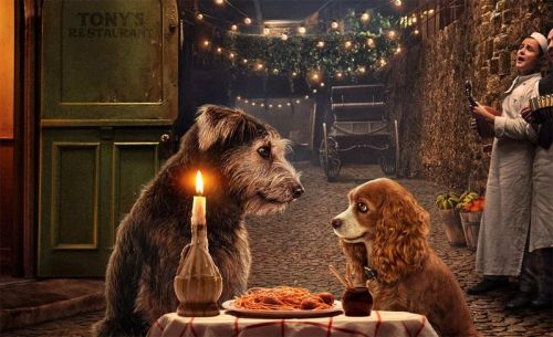 D23: Lady and the Tramp Trailer for Disney+'s Live-Action Remake!