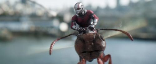 'Ant-Man and the Wasp' Trailer Breakdown: Sizeable Action, a Mysterious Ghost and a Drumming Ant