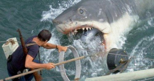 Richard Dreyfuss Really Wants a Jaws Rerelease with a CGI
