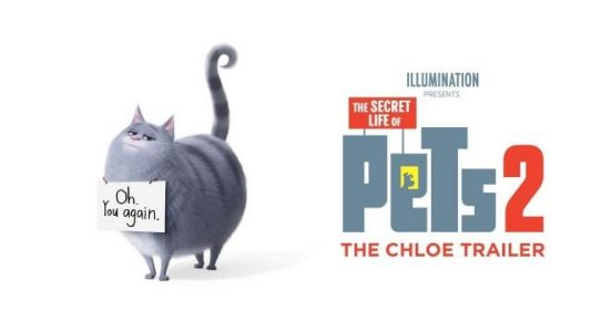 Chloe Gets High on Catnip in New The Secret Life of Pets 2 Trailer