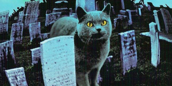 Paramount Sets 2019 Dates For 'Pet Sematary' & 'Instant Family'