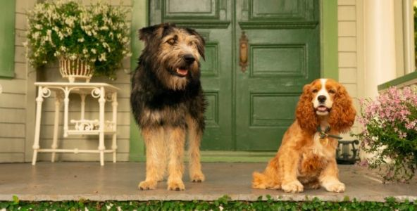 'Lady and the Tramp' Trailer: Must Love Dog Romances