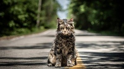 'Pet Sematary,' 'Aladdin', & More Trailers You May Have Missed