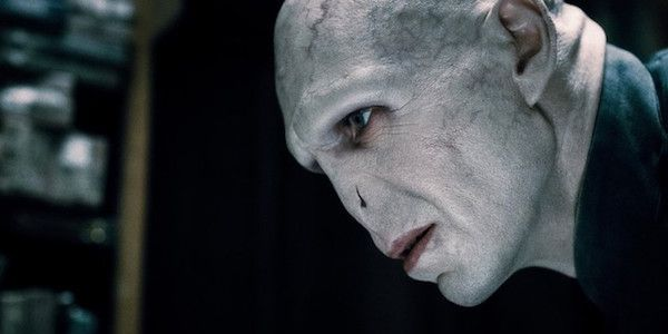 Ralph Fiennes Almost Turned Down Playing Voldemort In Harry Potter