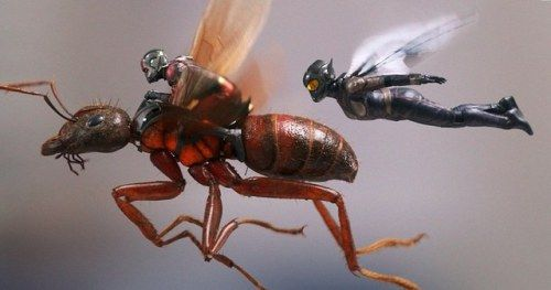 Ant-Man 2 Goes Searching for Janet Van Dyne, New Photos