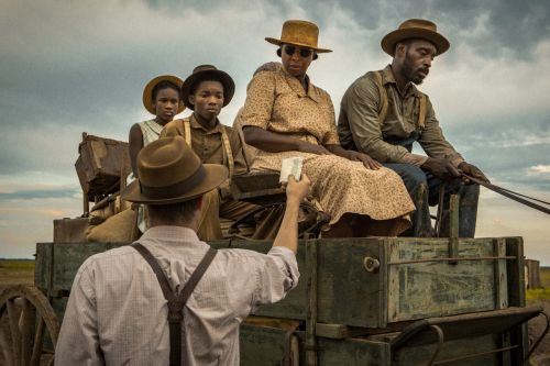 Netflix's 'Mudbound' Scores 4 Oscar Nominations, Including The First Female Best Cinematographer Nominee In Oscar History