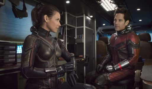 How Ant-Man and The Wasp Work Together & Clash in The Sequel