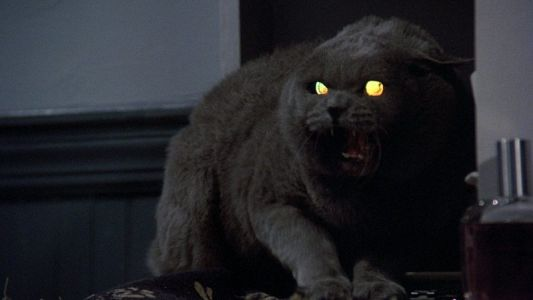 Pet Sematary and Instant Family Get 2019 Release Dates from Paramount